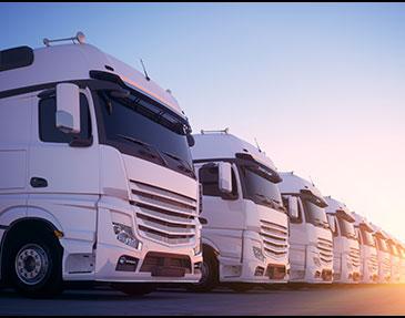 Expanding-our-fleet