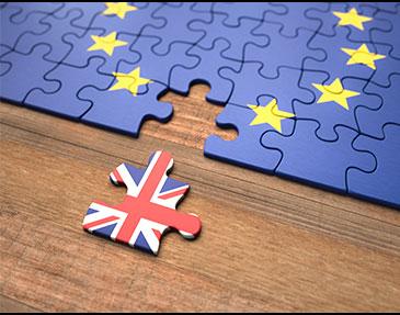 RHA-Brexit-Essentials